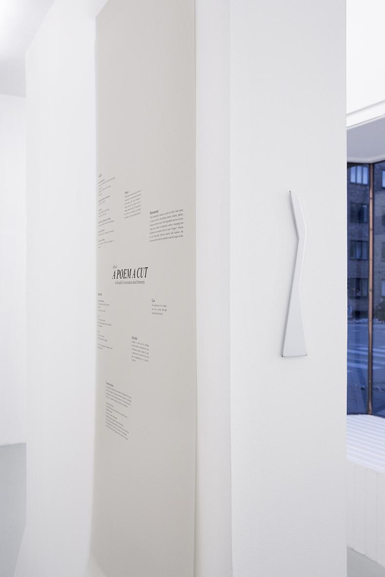 Modern Object; a Blade and a Handle, 2013, objekt i forkromet stål, udstillingsvæg og plakat.