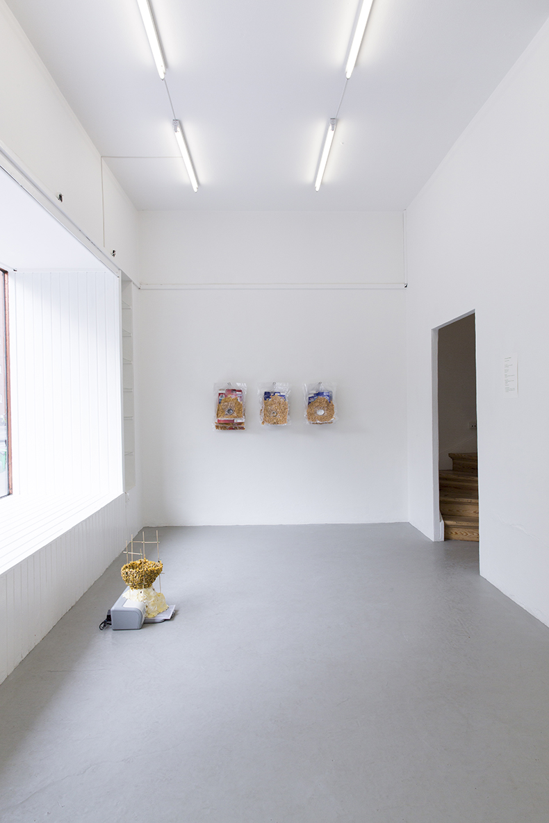 Nydelse og indsigt, 2013. Installation view.